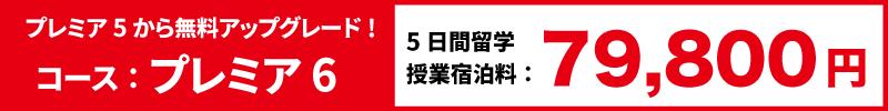 5日留学料金