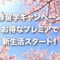 春キャンペーンサムネ